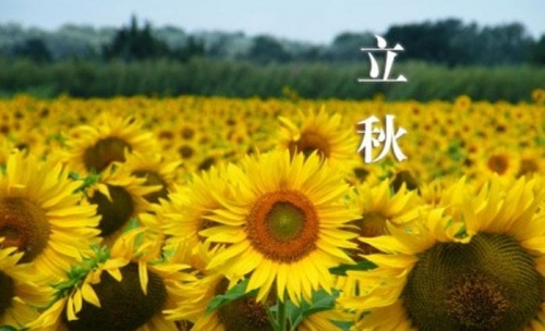 【灵芝养生】:秋季养生