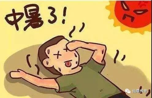 预防中暑误区:你中招了吗?